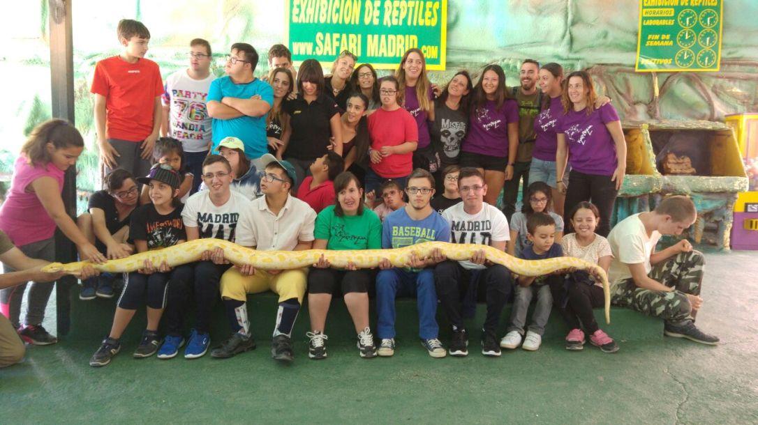 Grupo Monis